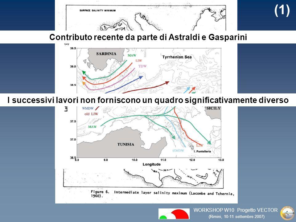 WORKSHOP W10 Progetto VECTOR (Rimini, 10-11 settembre 2007) (1) I successivi lavori non forniscono un quadro significativamente diverso Contributo recente da parte di Astraldi e Gasparini