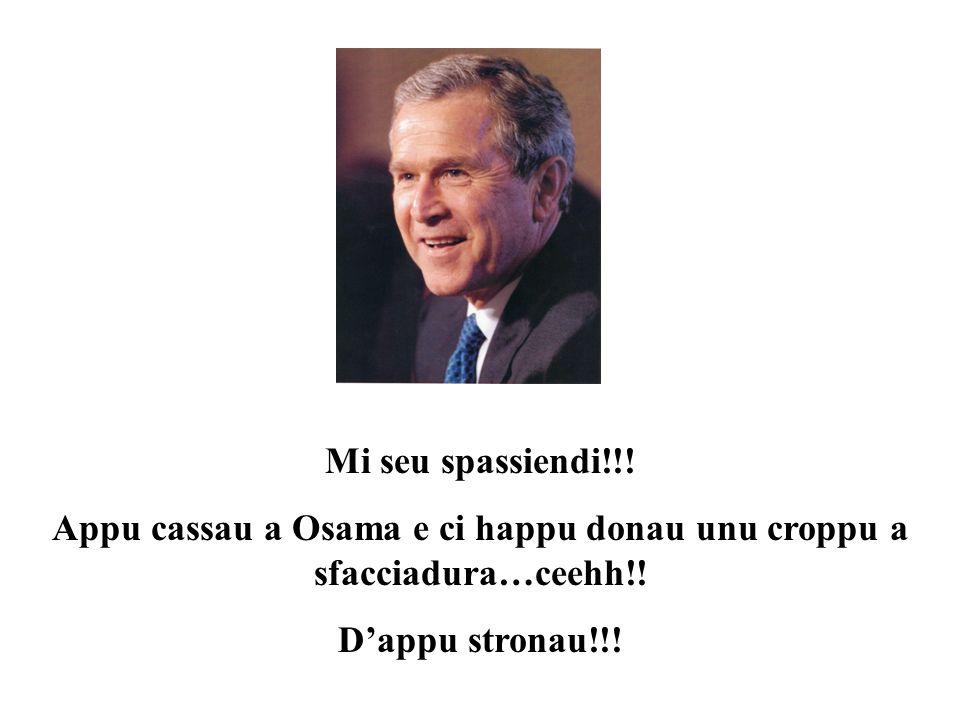 Mi seu spassiendi!!.Appu cassau a Osama e ci happu donau unu croppu a sfacciadura…ceehh!.
