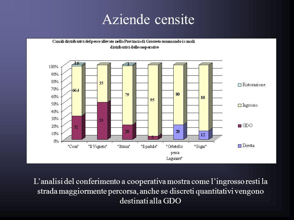 Aziende censite Lanalisi del conferimento a cooperativa mostra come lingrosso resti la strada maggiormente percorsa, anche se discreti quantitativi vengono destinati alla GDO