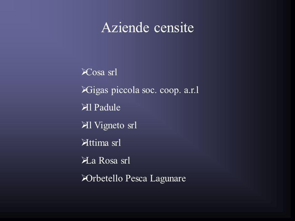 Aziende censite Le specie maggiormente allevate risultano essere la spigola e lorata; Nonostante le basse quantità prodotte risultano importanti le produzioni di anguilla sfumata e bottarga di cefalo.