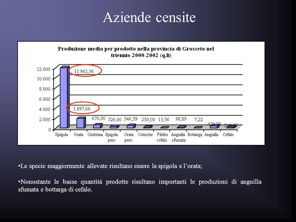 Aziende censite Il maggior fatturato è quello prodotto da spigola ed orata; Nonostante le basse quantità prodotte risultano importanti le produzioni a valore di anguilla sfumata e bottarga di cefalo.
