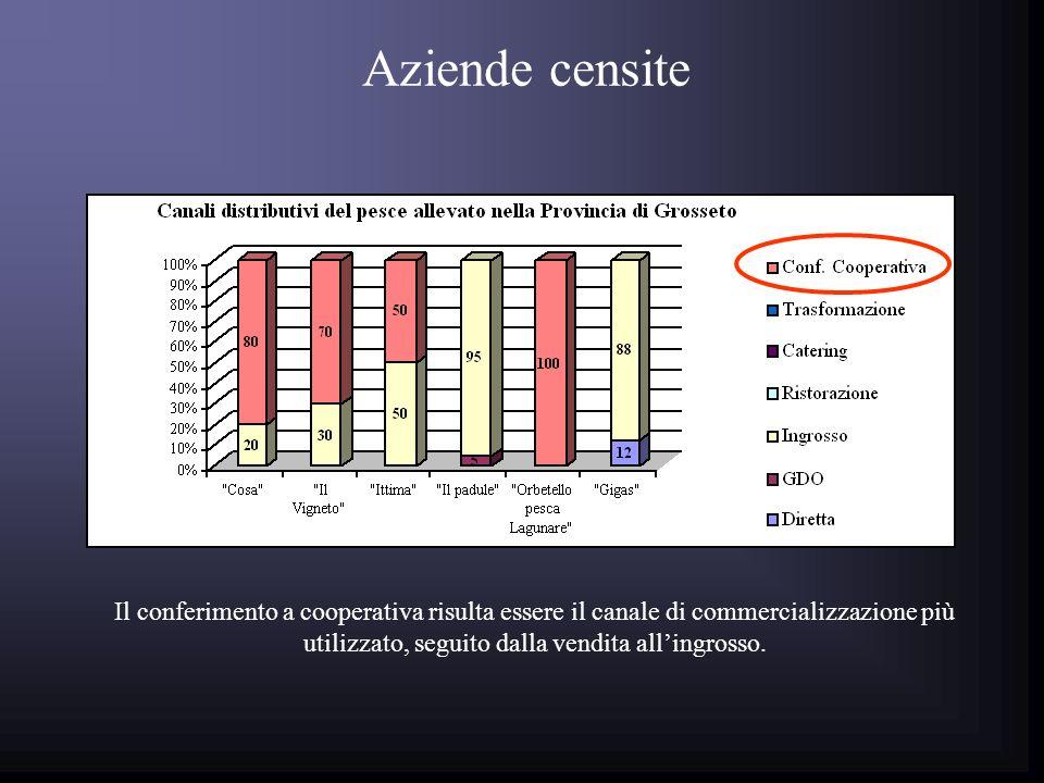 Il conferimento a cooperativa risulta essere il canale di commercializzazione più utilizzato, seguito dalla vendita allingrosso.