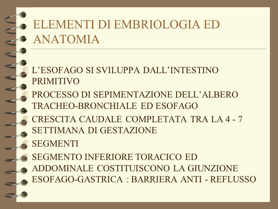 ELEMENTI DI EMBRIOLOGIA ED ANATOMIA 4 LESOFAGO SI SVILUPPA DALLINTESTINO PRIMITIVO 4 PROCESSO DI SEPIMENTAZIONE DELLALBERO TRACHEO-BRONCHIALE ED ESOFA
