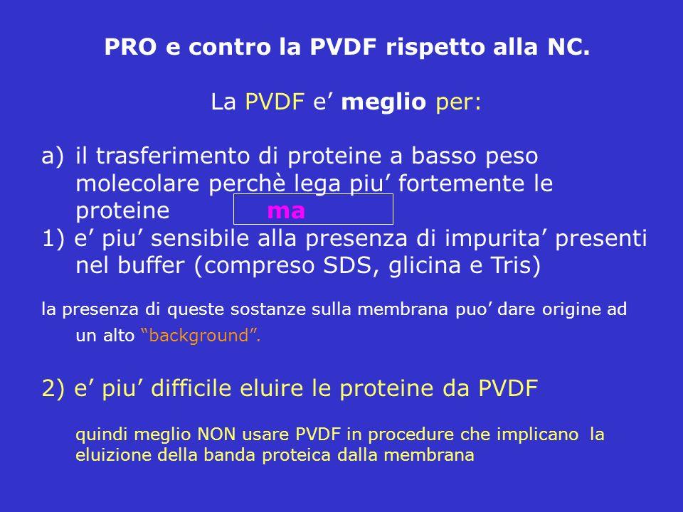 PRO e contro la PVDF rispetto alla NC. La PVDF e meglio per: a)il trasferimento di proteine a basso peso molecolare perchè lega piu fortemente le prot