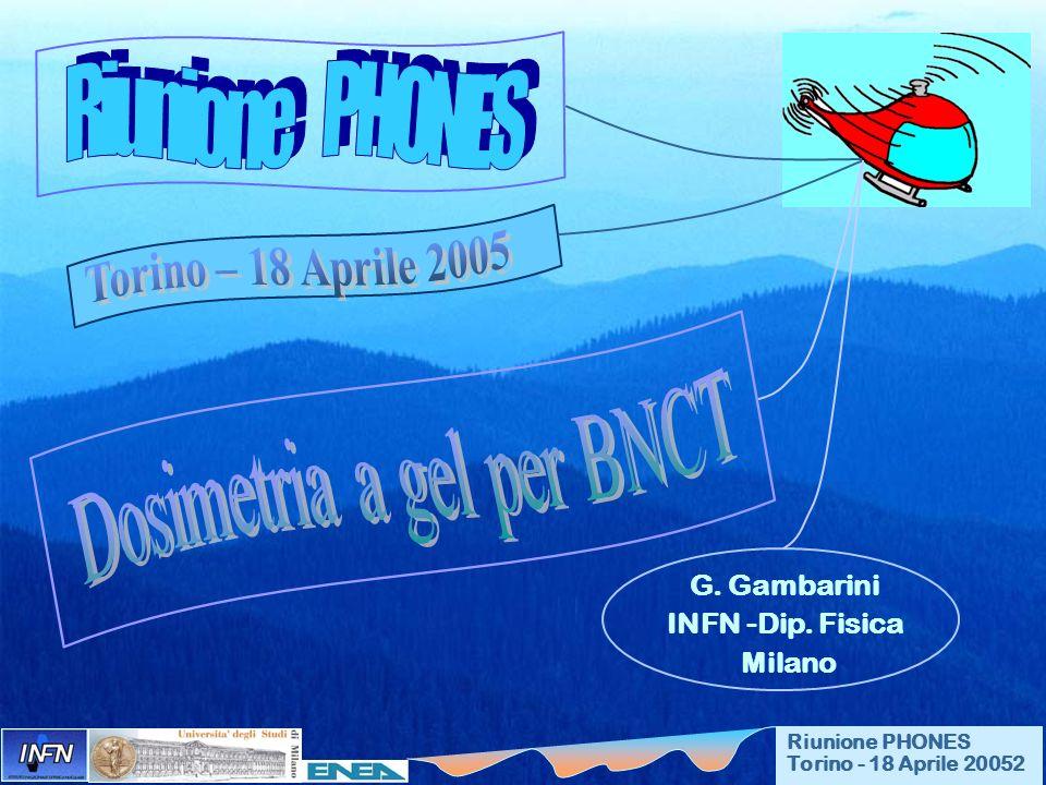 Riunione PHONES Torino - 18 Aprile 20052 G. Gambarini INFN -Dip. Fisica Milano