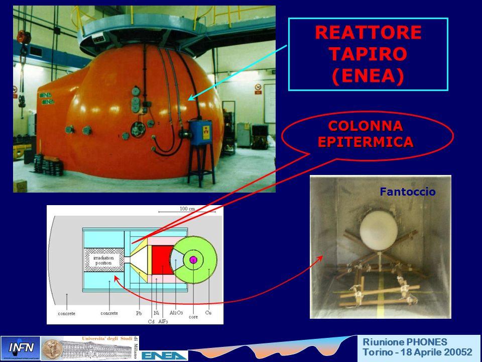 REATTORE TAPIRO (ENEA) COLONNA EPITERMICA Fantoccio Riunione PHONES Torino - 18 Aprile 20052