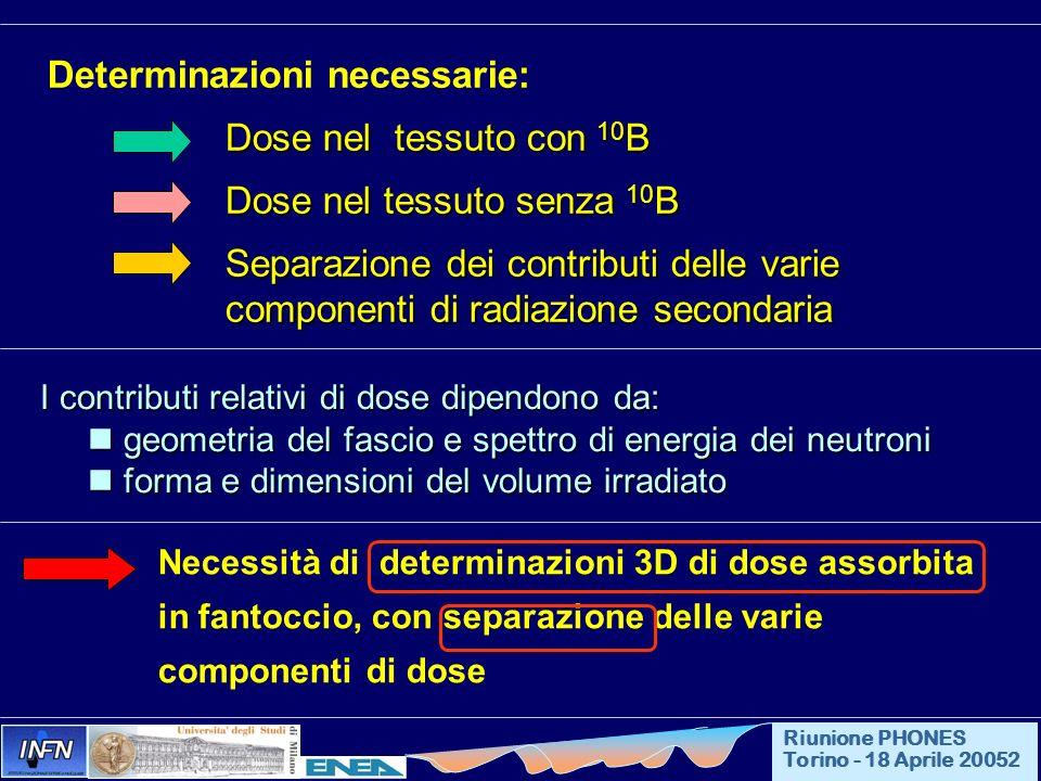 Determinazioni necessarie: Dose nel tessuto con 10 B Dose nel tessuto senza 10 B Dose nel tessuto senza 10 B Separazione dei contributi delle varie co