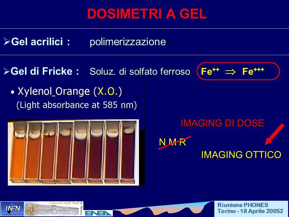 DOSIMETRI A GEL polimerizzazione Gel acrilici : polimerizzazione Soluz. di solfato ferroso Gel di Fricke : Soluz. di solfato ferroso Fe ++ Fe +++ IMAG