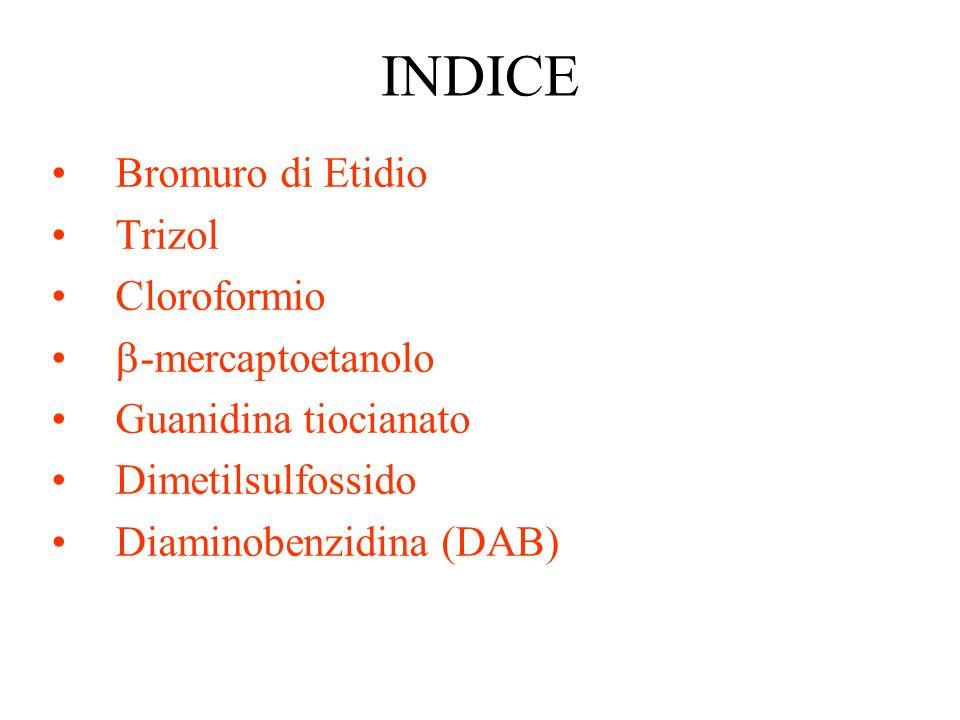 INDICE Bromuro di Etidio Trizol Cloroformio -mercaptoetanolo Guanidina tiocianato Dimetilsulfossido Diaminobenzidina (DAB)