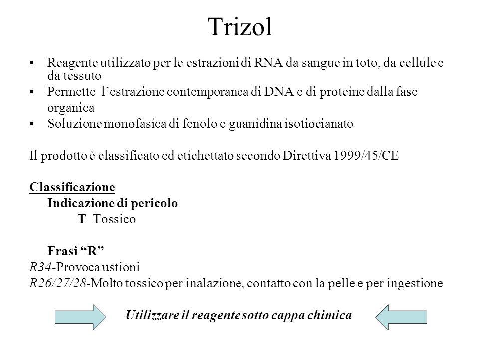 Trizol Reagente utilizzato per le estrazioni di RNA da sangue in toto, da cellule e da tessuto Permette lestrazione contemporanea di DNA e di proteine