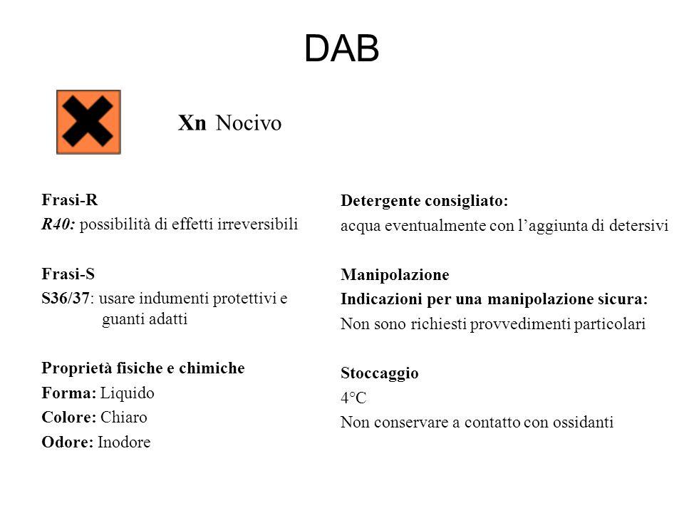 DAB Xn Nocivo Frasi-R R40: possibilità di effetti irreversibili Frasi-S S36/37: usare indumenti protettivi e guanti adatti Proprietà fisiche e chimich