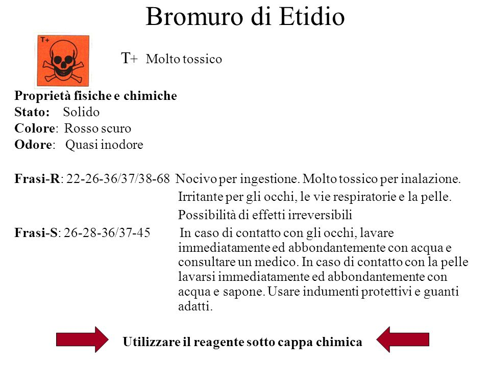 Bromuro di Etidio T + Molto tossico Proprietà fisiche e chimiche Stato: Solido Colore: Rosso scuro Odore: Quasi inodore Frasi-R: 22-26-36/37/38-68 Nocivo per ingestione.