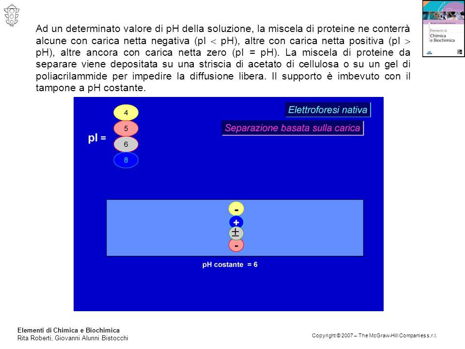 Elementi di Chimica e Biochimica Rita Roberti, Giovanni Alunni Bistocchi Copyright © 2007 – The McGraw-Hill Companies s.r.l. Ad un determinato valore