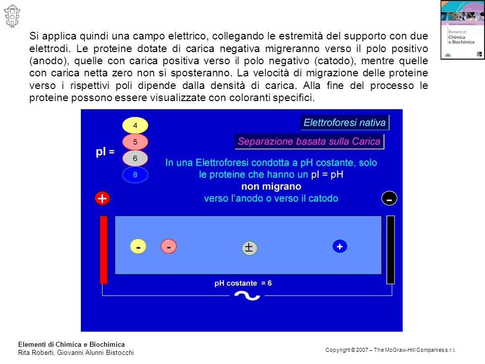 Elementi di Chimica e Biochimica Rita Roberti, Giovanni Alunni Bistocchi Copyright © 2007 – The McGraw-Hill Companies s.r.l. Si applica quindi una cam