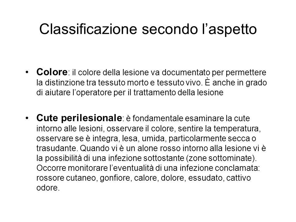 Classificazione secondo laspetto Colore : il colore della lesione va documentato per permettere la distinzione tra tessuto morto e tessuto vivo. È anc