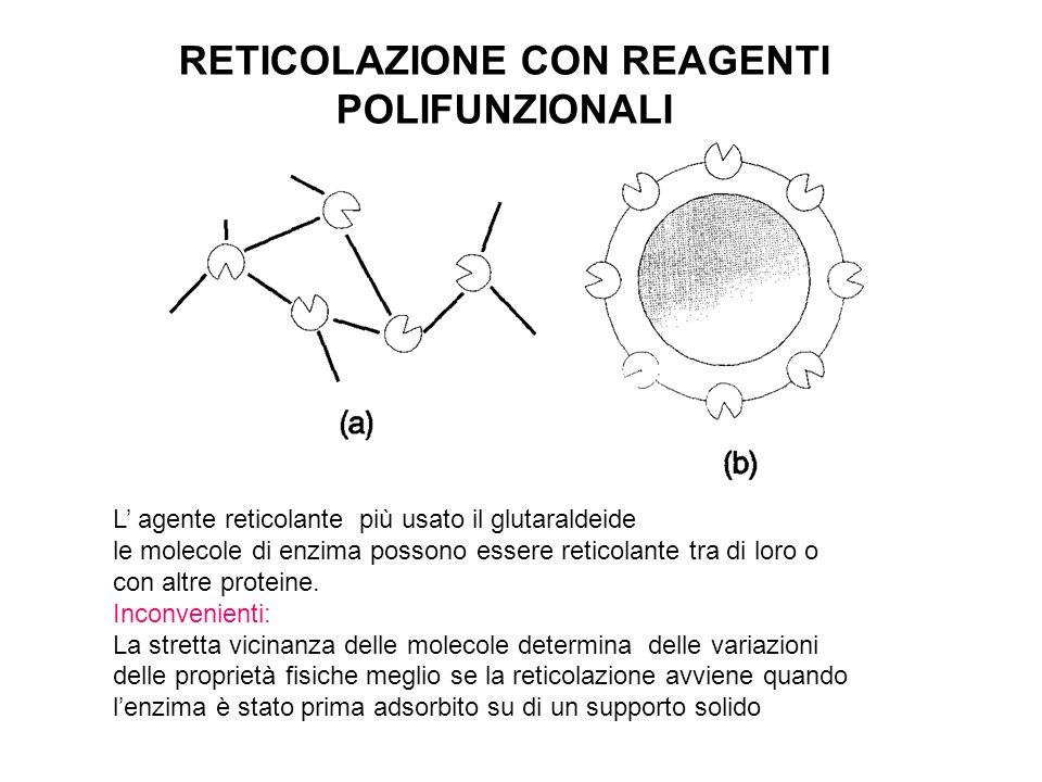 RETICOLAZIONE CON REAGENTI POLIFUNZIONALI L agente reticolante più usato il glutaraldeide le molecole di enzima possono essere reticolante tra di loro