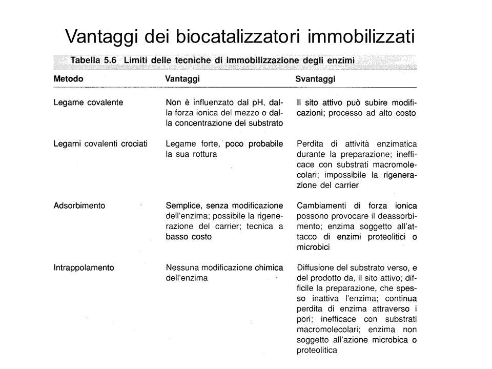 Vantaggi dei biocatalizzatori immobilizzati TIPI DI REATTORI