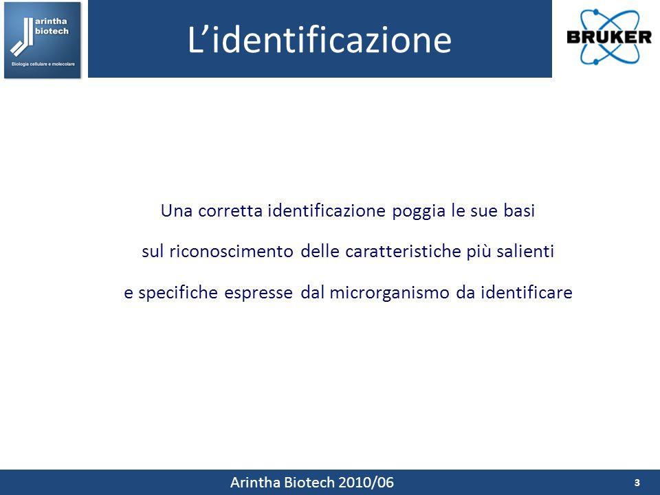 Lidentificazione 3 Arintha Biotech 2010/06 Una corretta identificazione poggia le sue basi sul riconoscimento delle caratteristiche più salienti e specifiche espresse dal microrganismo da identificare