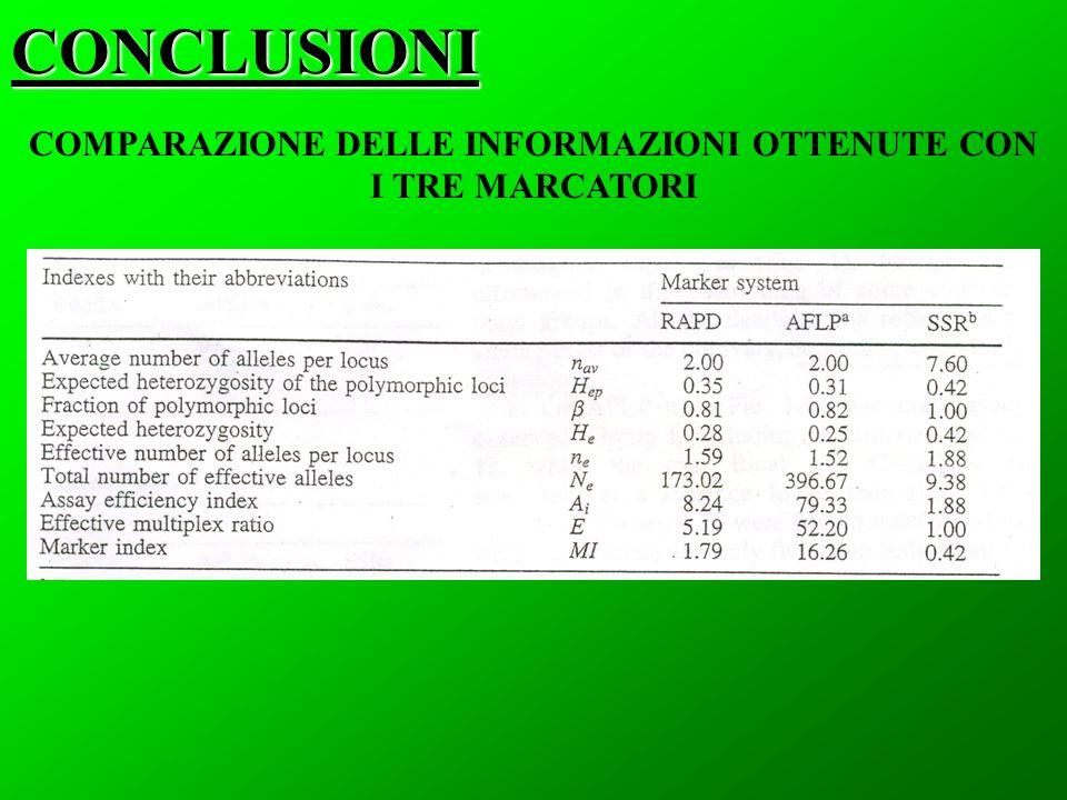 CONCLUSIONI COMPARAZIONE DELLE INFORMAZIONI OTTENUTE CON I TRE MARCATORI