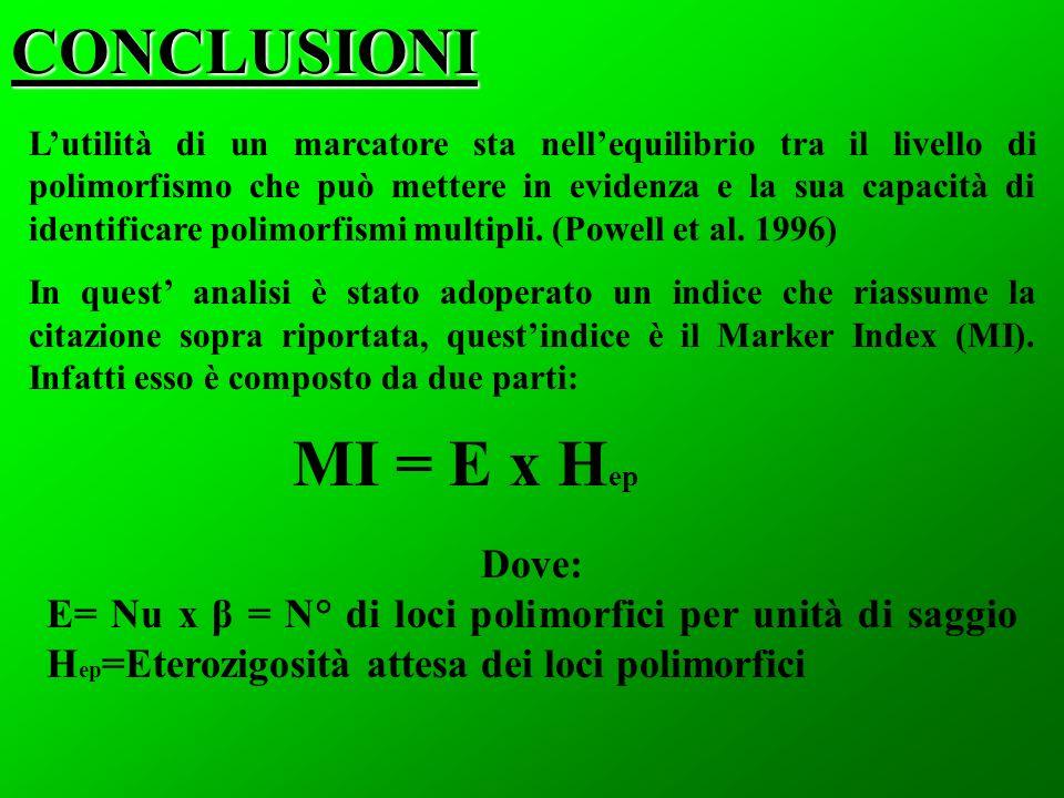 CONCLUSIONI Lutilità di un marcatore sta nellequilibrio tra il livello di polimorfismo che può mettere in evidenza e la sua capacità di identificare p