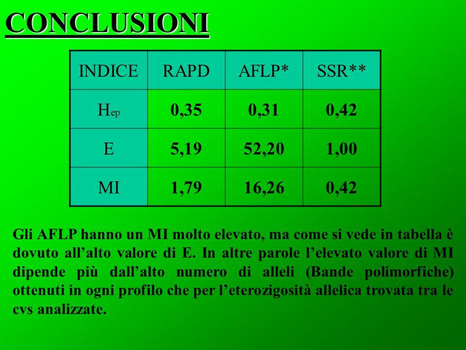 CONCLUSIONI Gli AFLP hanno un MI molto elevato, ma come si vede in tabella è dovuto allalto valore di E. In altre parole lelevato valore di MI dipende