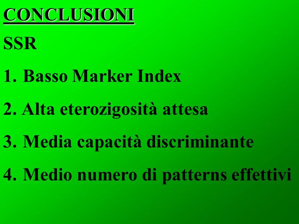 CONCLUSIONI SSR 1. Basso Marker Index 2. Alta eterozigosità attesa 3. Media capacità discriminante 4. Medio numero di patterns effettivi