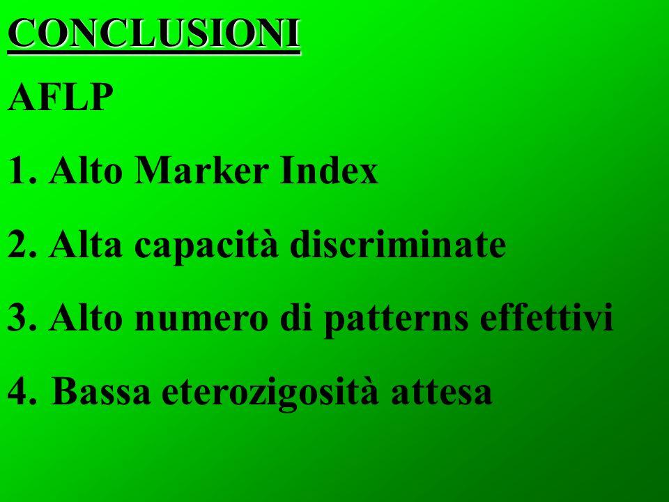 AFLP 1. Alto Marker Index 2. Alta capacità discriminate 3. Alto numero di patterns effettivi 4. Bassa eterozigosità attesaCONCLUSIONI