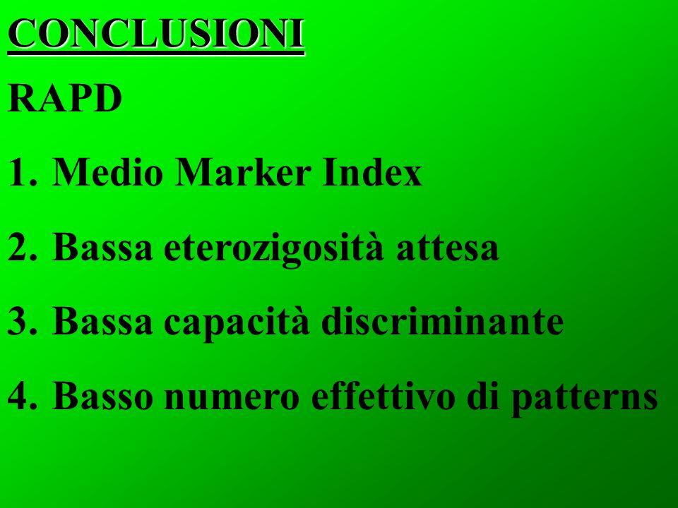 RAPD 1. Medio Marker Index 2. Bassa eterozigosità attesa 3. Bassa capacità discriminante 4. Basso numero effettivo di patternsCONCLUSIONI