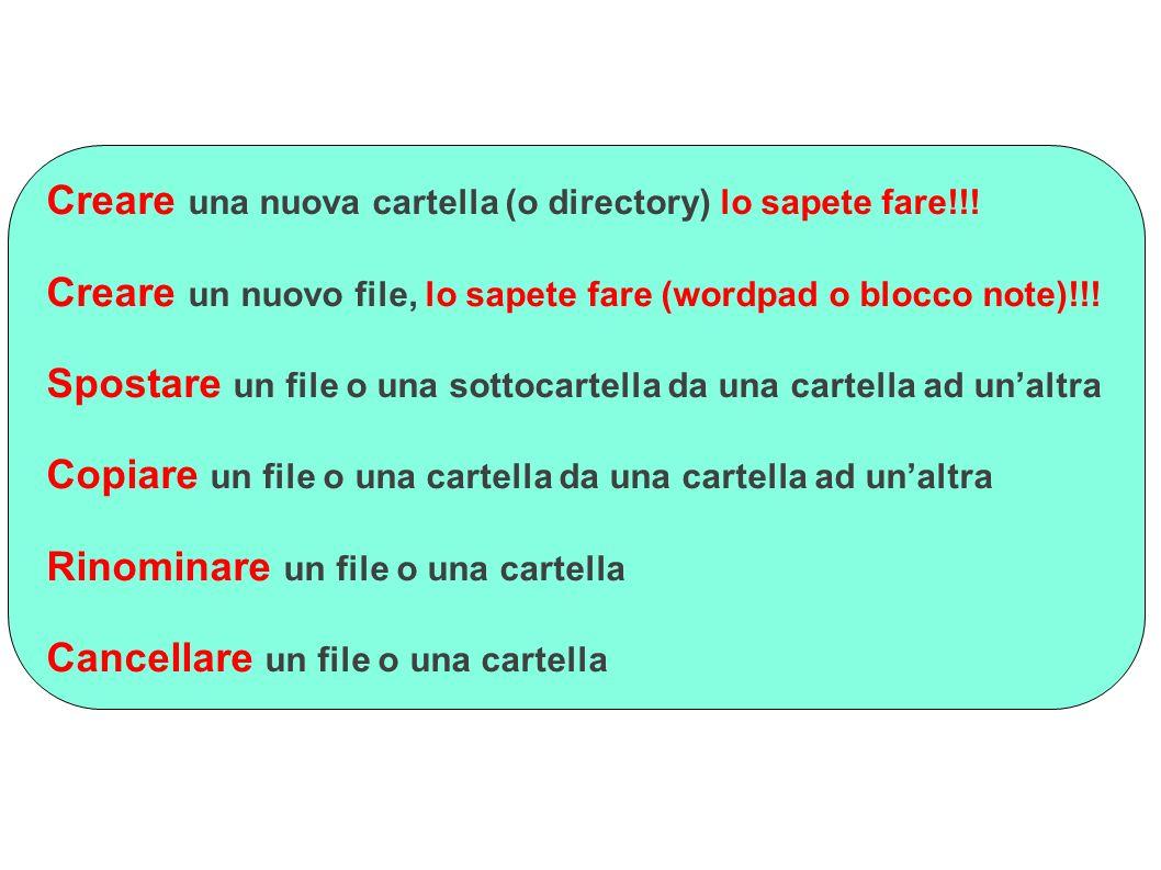 Creare una nuova cartella (o directory) lo sapete fare!!! Creare un nuovo file, lo sapete fare (wordpad o blocco note)!!! Spostare un file o una sotto