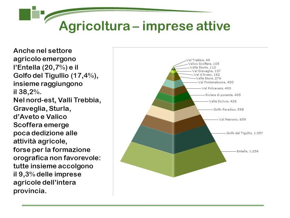 Agricoltura – imprese attive Anche nel settore agricolo emergono lEntella (20,7%) e il Golfo del Tigullio (17,4%), insieme raggiungono il 38,2%. Nel n