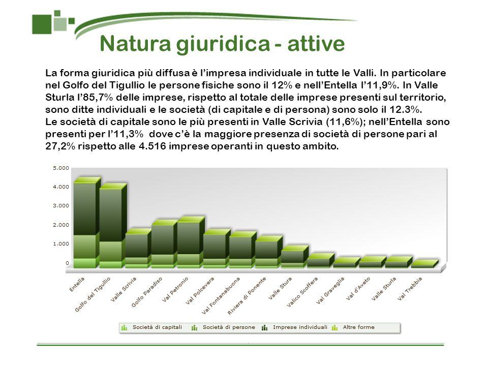 Natura giuridica - attive La forma giuridica più diffusa è limpresa individuale in tutte le Valli. In particolare nel Golfo del Tigullio le persone fi