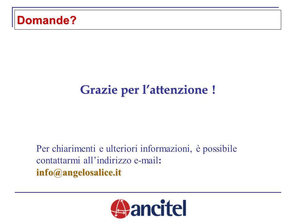 Per chiarimenti e ulteriori informazioni, è possibile contattarmi allindirizzo e-mail:info@angelosalice.it Grazie per lattenzione .