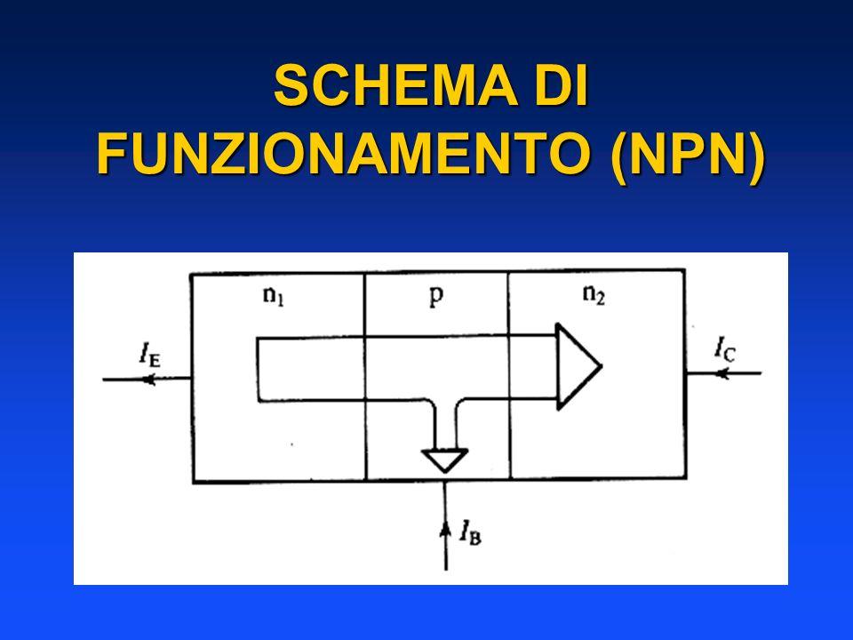SCHEMA DI FUNZIONAMENTO (NPN)