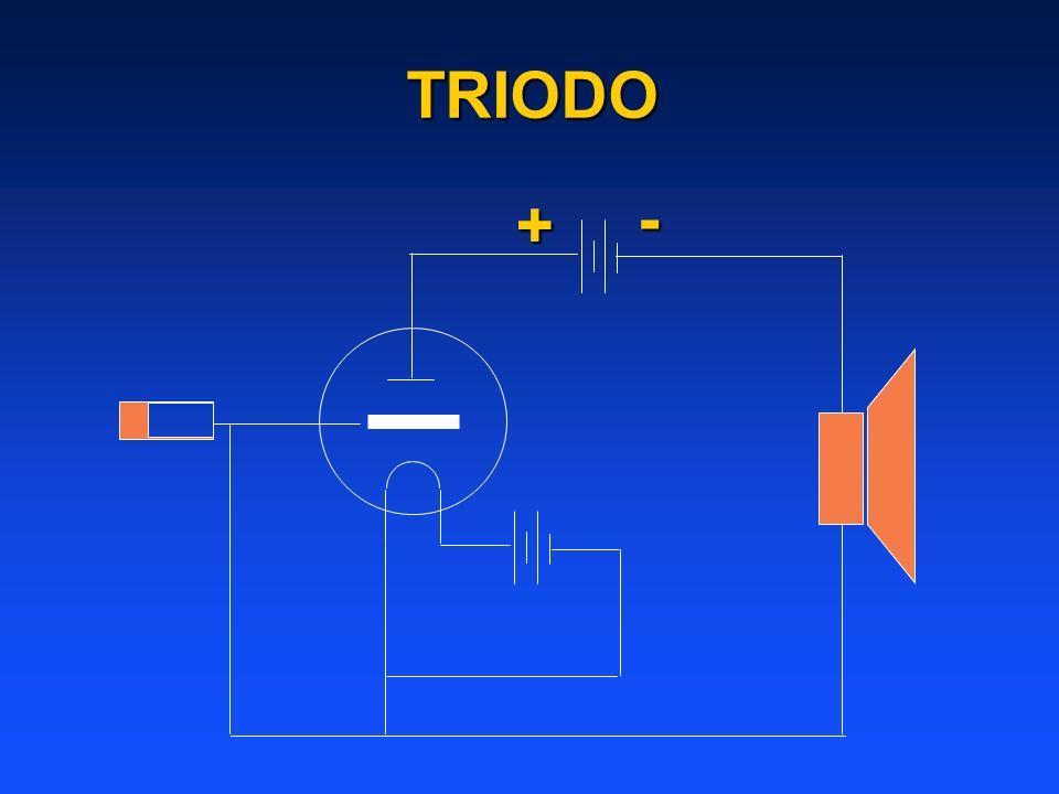+-TRIODO