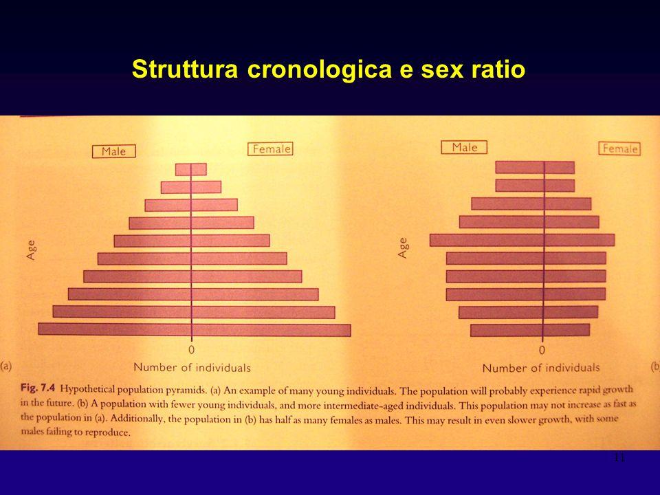 11 Struttura cronologica e sex ratio