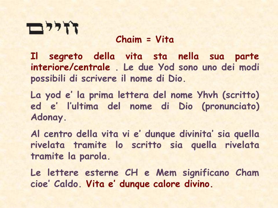 Chaim = Vita Il segreto della vita sta nella sua parte interiore/centrale.