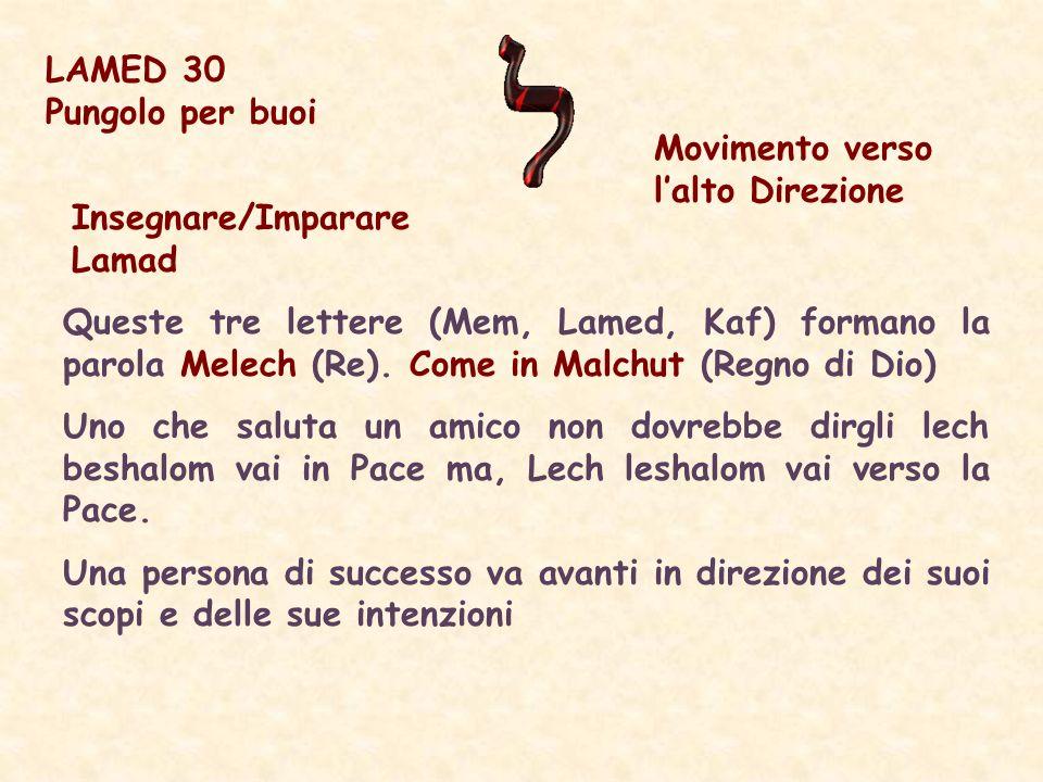 Insegnare/Imparare Lamad Queste tre lettere (Mem, Lamed, Kaf) formano la parola Melech (Re).