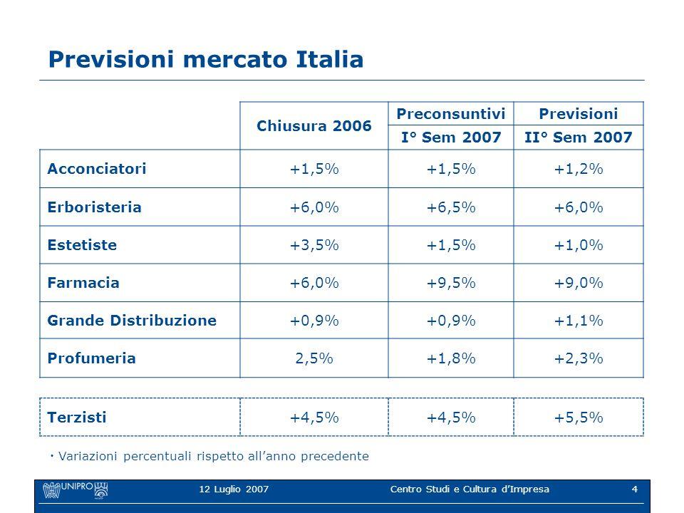 12 Luglio 2007Centro Studi e Cultura dImpresa4 Previsioni mercato Italia Chiusura 2006 PreconsuntiviPrevisioni I° Sem 2007II° Sem 2007 Acconciatori+1,5% +1,2% Erboristeria+6,0%+6,5%+6,0% Estetiste+3,5%+1,5%+1,0% Farmacia+6,0%+9,5%+9,0% Grande Distribuzione+0,9% +1,1% Profumeria2,5%+1,8%+2,3% Terzisti+4,5% +5,5% Variazioni percentuali rispetto allanno precedente