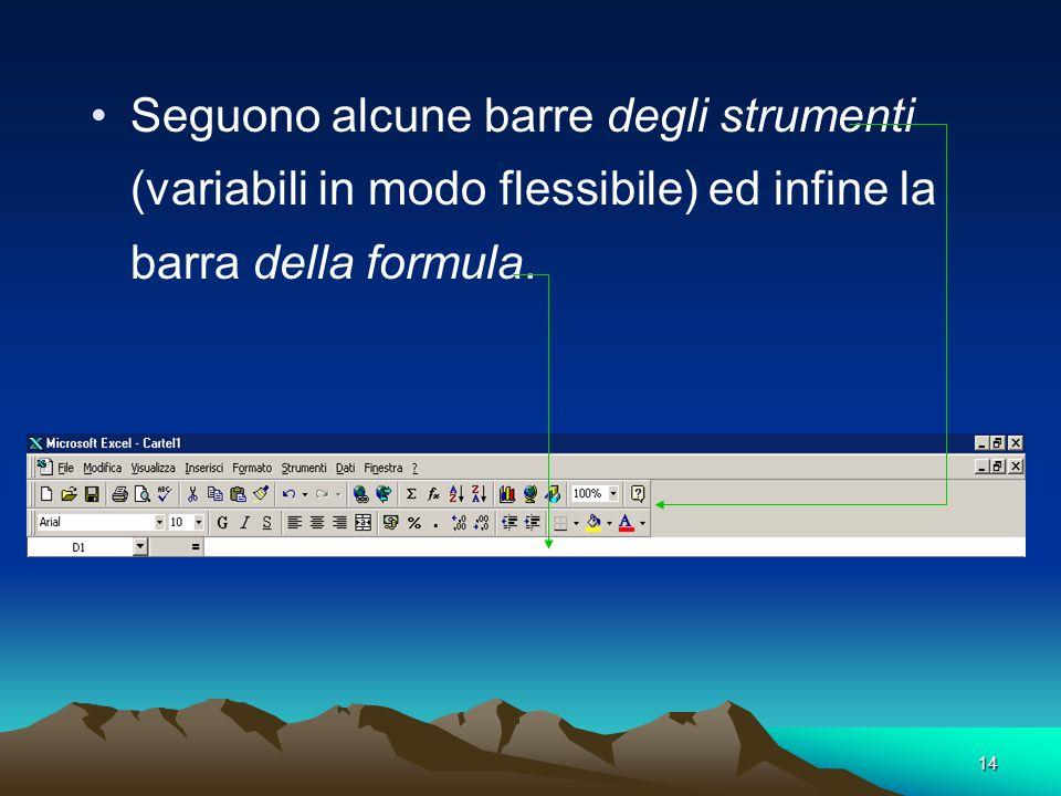 14 Seguono alcune barre degli strumenti (variabili in modo flessibile) ed infine la barra della formula.
