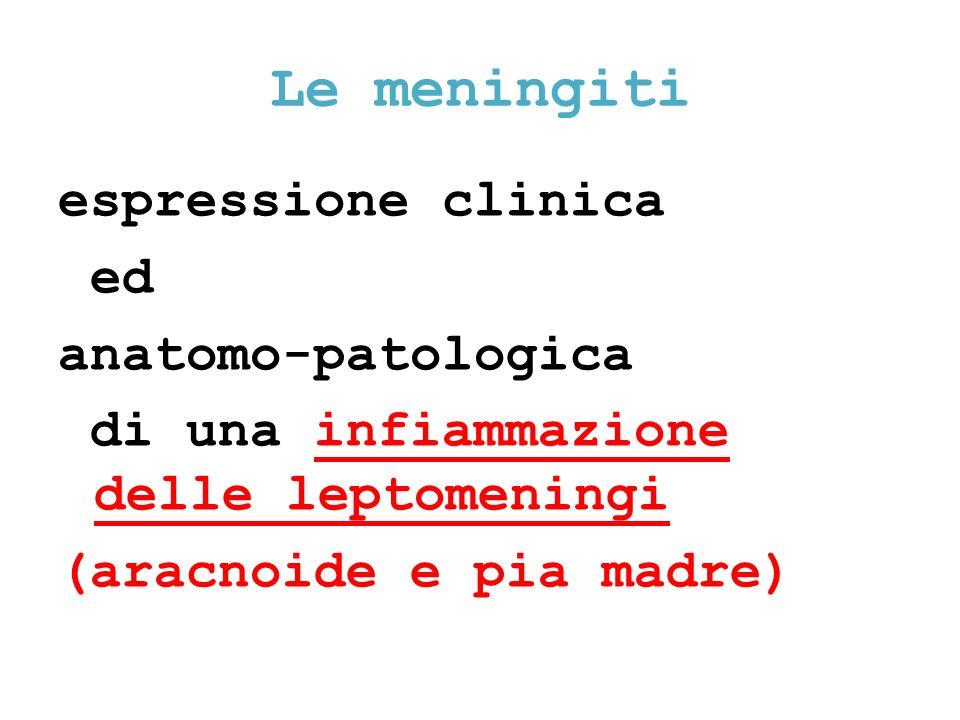 Le meningiti espressione clinica ed anatomo-patologica di una infiammazione delle leptomeningi (aracnoide e pia madre)