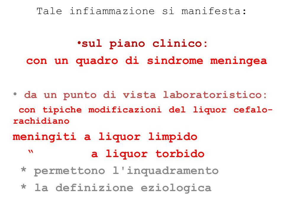 Tale infiammazione si manifesta: sul piano clinico: con un quadro di sindrome meningea da un punto di vista laboratoristico: con tipiche modificazioni