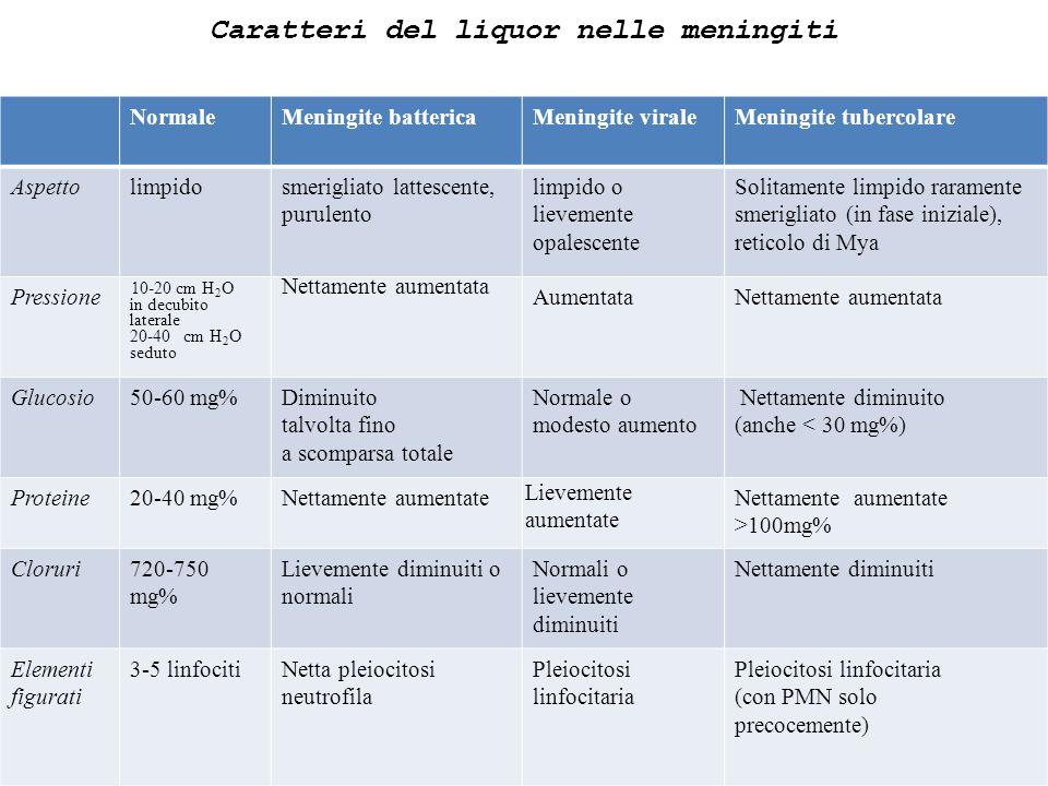 Caratteri del liquor nelle meningiti NormaleMeningite battericaMeningite viraleMeningite tubercolare Aspettolimpidosmerigliato lattescente, purulento