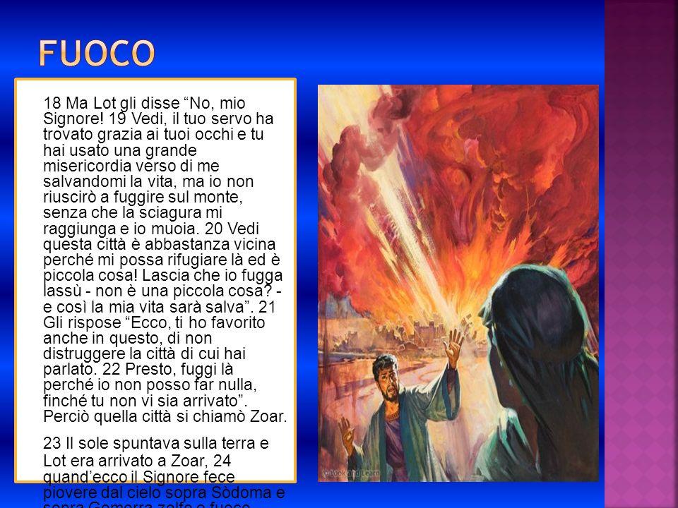 18 Ma Lot gli disse No, mio Signore! 19 Vedi, il tuo servo ha trovato grazia ai tuoi occhi e tu hai usato una grande misericordia verso di me salvando