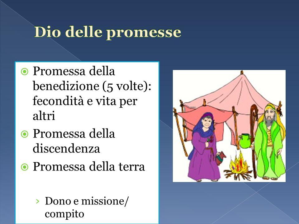 Promessa della benedizione (5 volte): fecondità e vita per altri Promessa della discendenza Promessa della terra Dono e missione/ compito