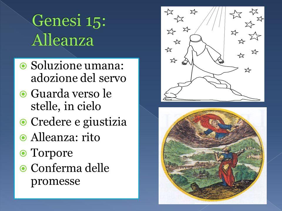 Soluzione umana: adozione del servo Guarda verso le stelle, in cielo Credere e giustizia Alleanza: rito Torpore Conferma delle promesse