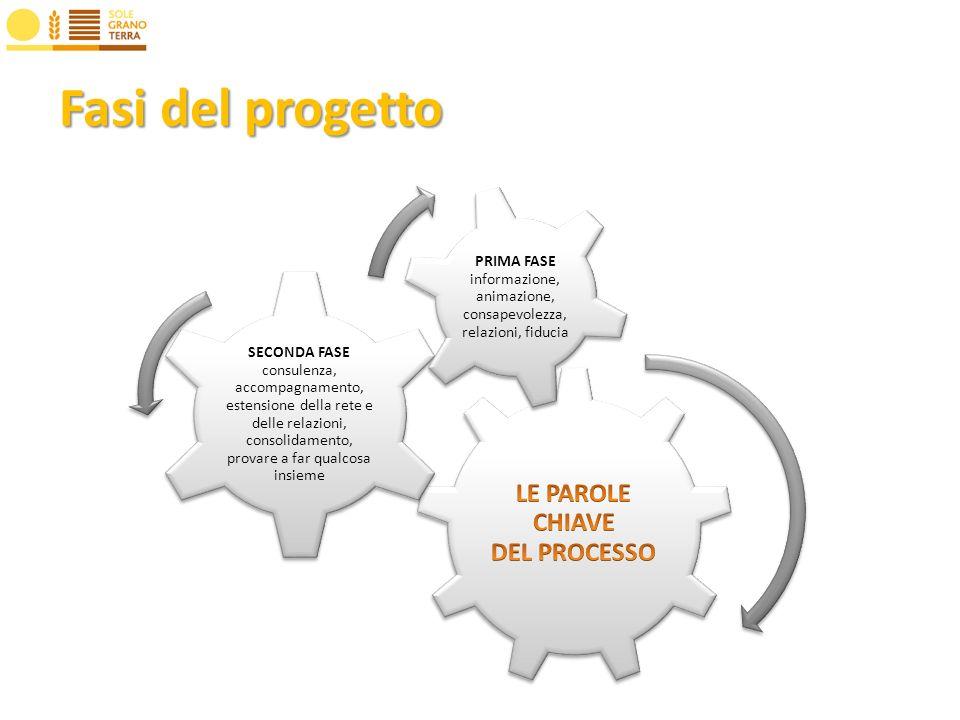 Fasi del progetto SECONDA FASE consulenza, accompagnamento, estensione della rete e delle relazioni, consolidamento, provare a far qualcosa insieme PRIMA FASE informazione, animazione, consapevolezza, relazioni, fiducia