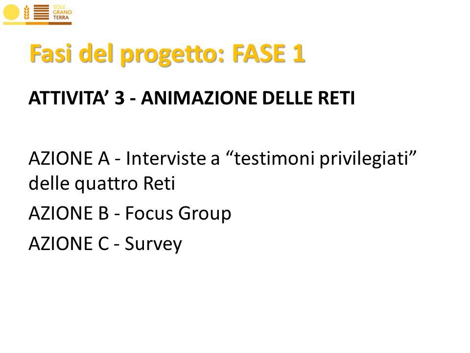 Fasi del progetto: FASE 1 ATTIVITA 3 - ANIMAZIONE DELLE RETI AZIONE A - Interviste a testimoni privilegiati delle quattro Reti AZIONE B - Focus Group AZIONE C - Survey