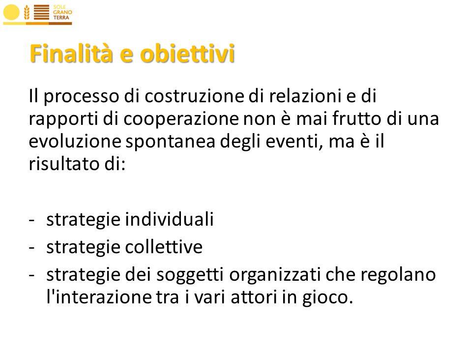 Finalità e obiettivi Il processo di costruzione di relazioni e di rapporti di cooperazione non è mai frutto di una evoluzione spontanea degli eventi, ma è il risultato di: -strategie individuali -strategie collettive -strategie dei soggetti organizzati che regolano l interazione tra i vari attori in gioco.