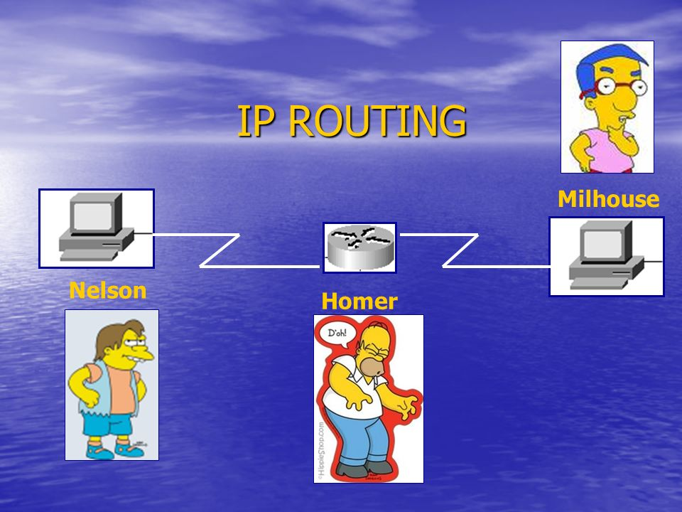 IP ROUTING Homer Nelson Milhouse