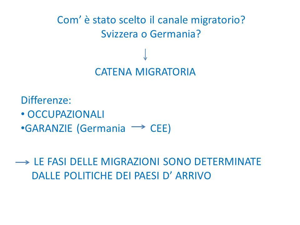 Com è stato scelto il canale migratorio? Svizzera o Germania? CATENA MIGRATORIA Differenze: OCCUPAZIONALI GARANZIE (Germania CEE) LE FASI DELLE MIGRAZ